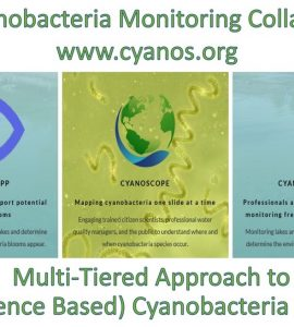 Cyanobacteria Monitoring Collaborative - A Multi-tiered Approach to (Citizen Science Based) Cyanobacteria Monitoring